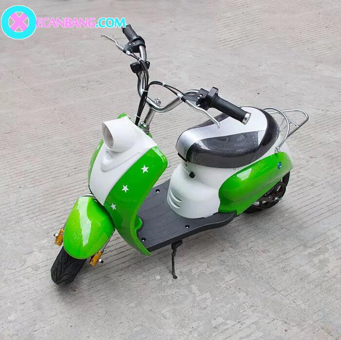 Xe máy điện E-scooter 24V