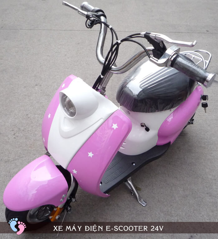 Xe máy điện E-scooter 24V 5